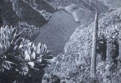 OT.31.jpg