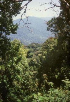 RW.25.jpg